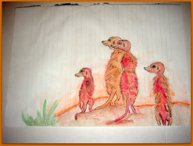 09-Meerkats and Owls Gufo, gufetto, suricato, suricati,