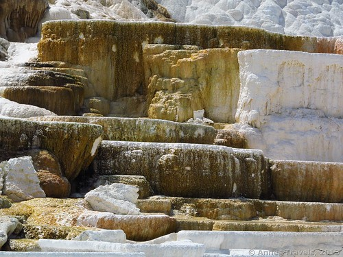 Some of the terraces at Palette Spring, Mammoth Hot Springs, Yellowstone National Park, Wyoming