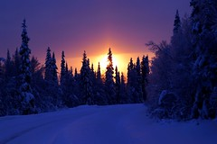 [Free Images] Nature, Forest, Snow, Sunrise / Sunset, Landscape - Finland ID:201302132000