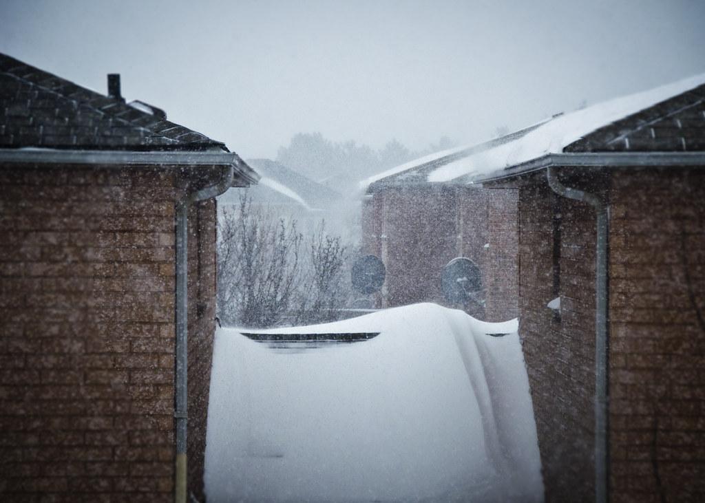 Snowstorm in Ontario