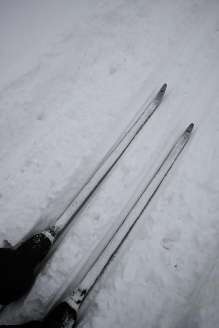 Photo:Ski. By MIKI Yoshihito. (#mikiyoshihito)