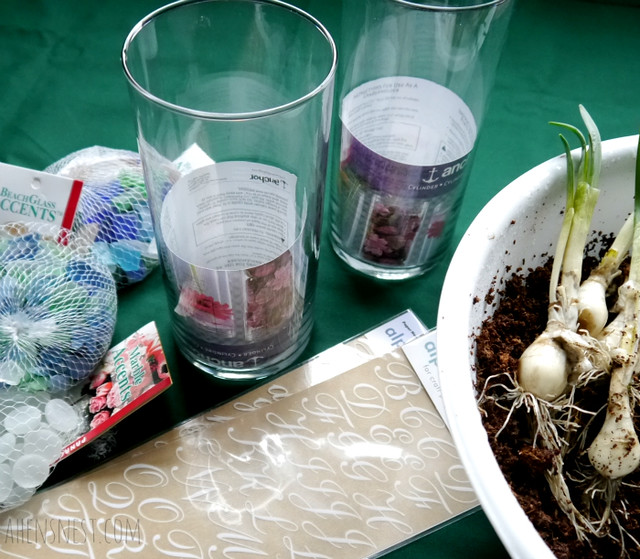 Potted Bulb Craft