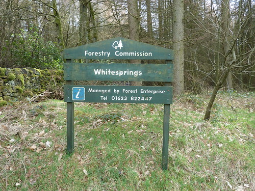 Seventy Acre Wood and Whitesprings ...