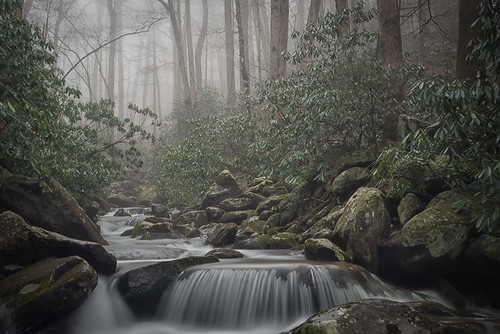 greatsmokymountainsnationalpark lecontecreek rainbowfalls waterfall smokies d800 gregholtfreter tennessee backwoods