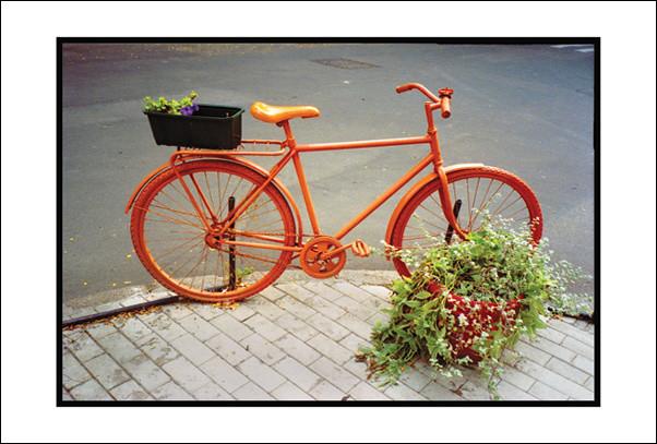 велосипед на Гоголя