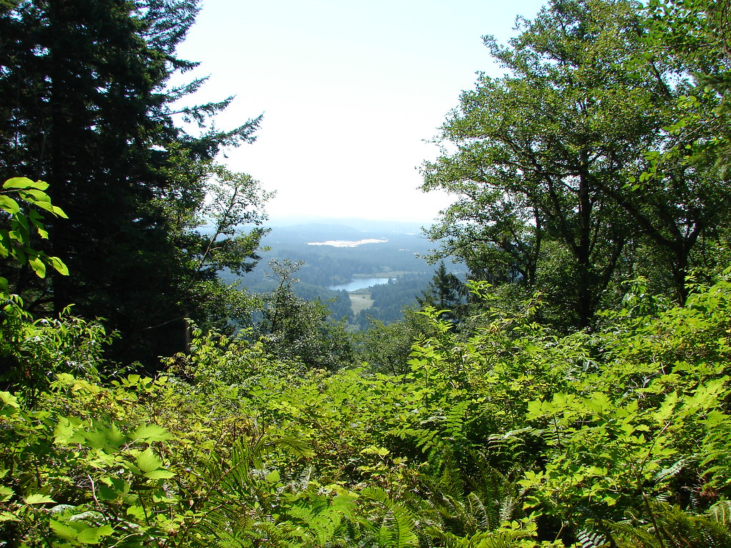 View from the Nelson Ridge Trail