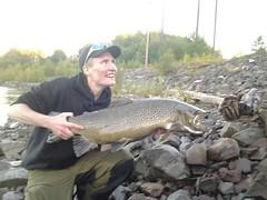 northern pike(0.0), carp(0.0), bass(0.0), perch(0.0), barramundi(0.0), animal(1.0), salmon-like fish(1.0), trout(1.0), fish(1.0), cod(1.0),