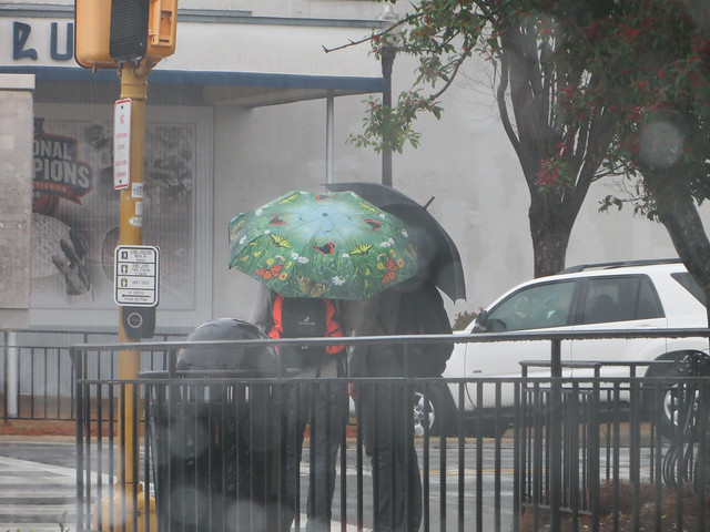 70.365 {More Rain}