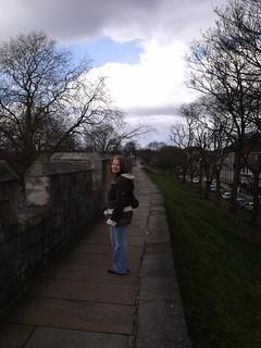 York Walls 2010