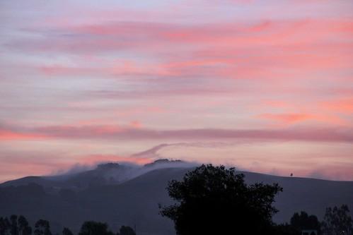 fog sunrise dawn day napacounty