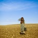 Where the wind blows by Patty Maher