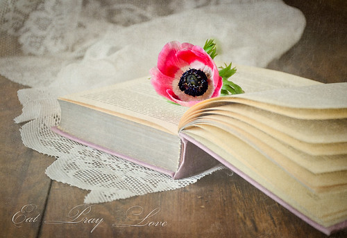 Flower and Book | by Zosimidou