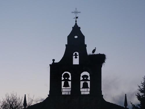 cigüeña de Santa María de Ordas (Leon)