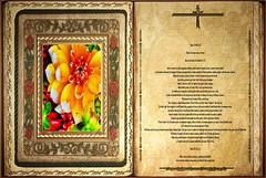 Lectura Libro de los Hechos de los Apóstoles 9,1-20. Viernes 19 Abril 2013