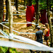 Track Walk 2016 - Coupe du monde UCI MTB World Cup DH