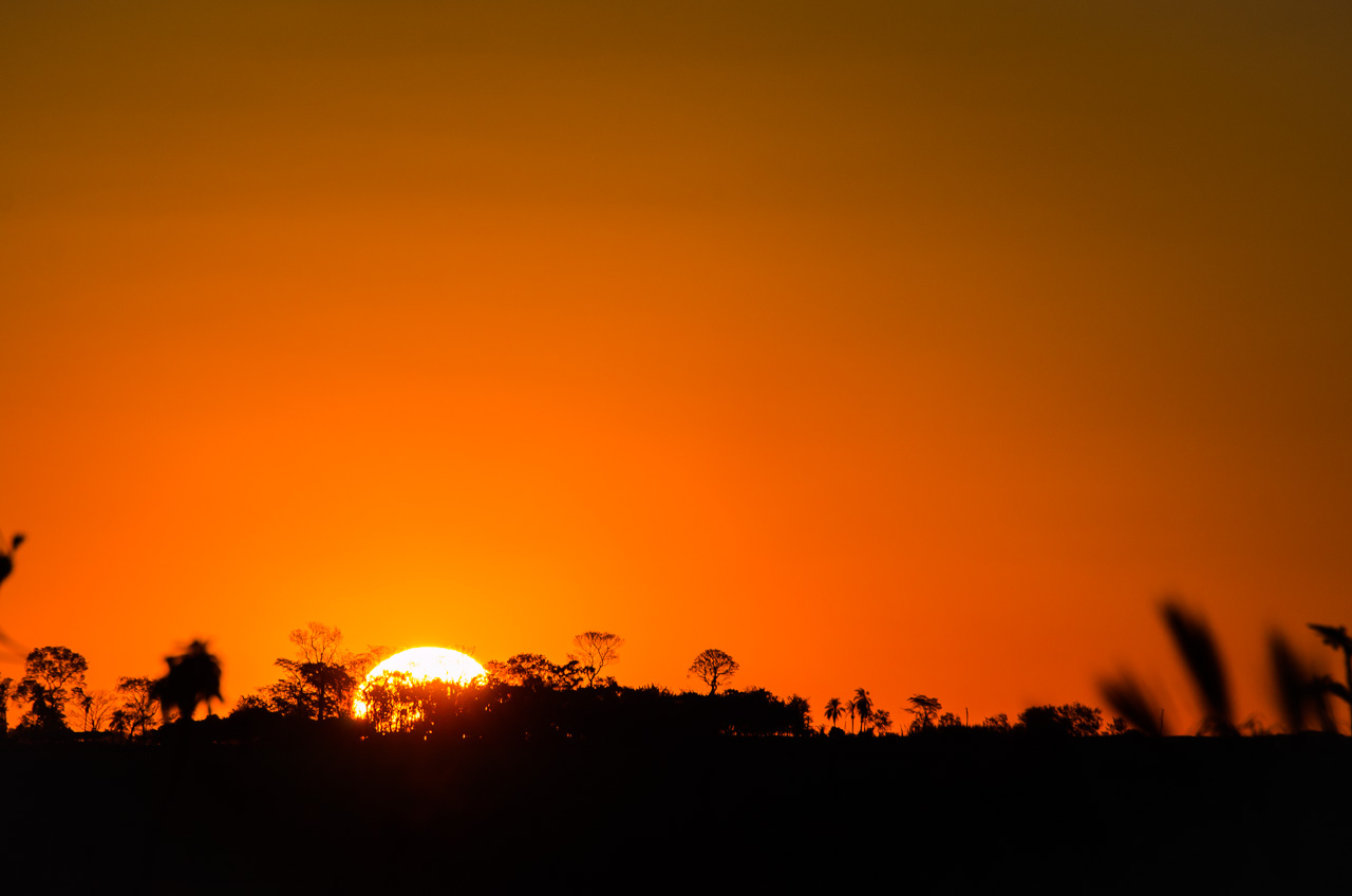 El sol se oculta lentamente en el horizonte boscoso de la Reserva Morombí, dándonos tiempo para sacarle un retrato. (Elton Núñez)