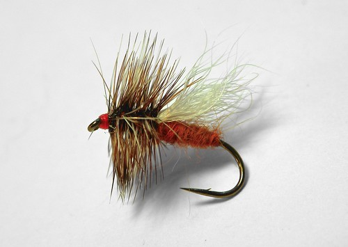 Ausable Caddis