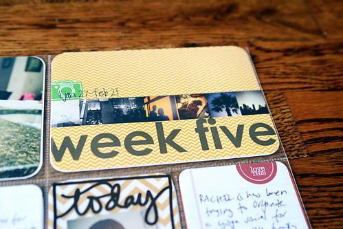 week 5 title page