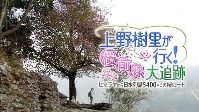 上野树里が行く!桜前线大追迹~ 01