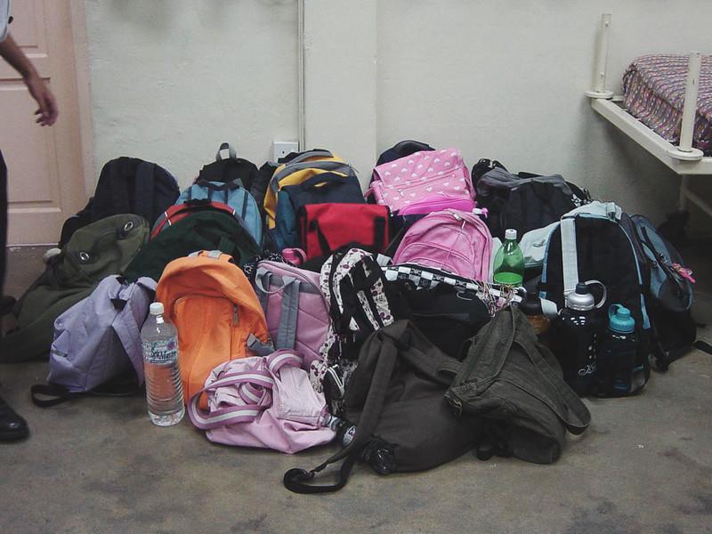 Bags. 2006.