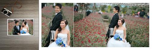 Album ảnh cưới Việt - Dung