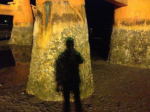厳島神社 大鳥居 ライトアップと自分の影