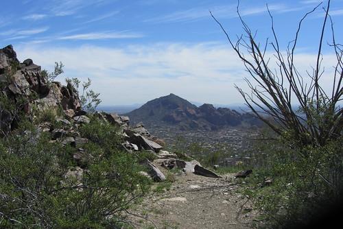 Arizona11