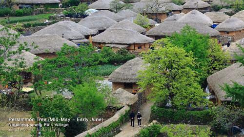 Naganeupseong-Folk-Village.jpg