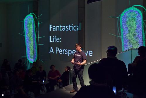 LateLab - Fantastical Life