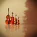 P52PRO-8 Quartet by irene liebler