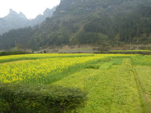 Hunan13-Fenghuang-Dehang-bus (39)