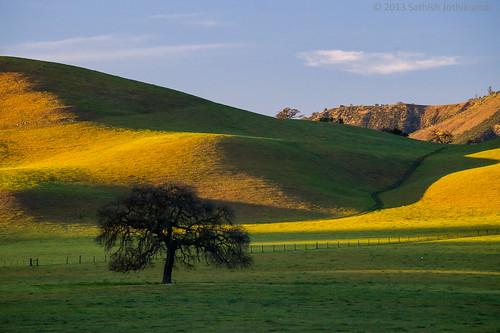 paisagem California EUA
