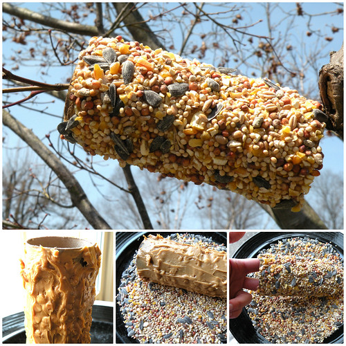 Mrs. Fields Secrets Homemade Bird Feeder