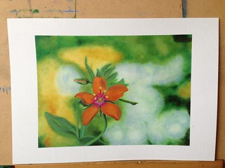 Orange flower painting