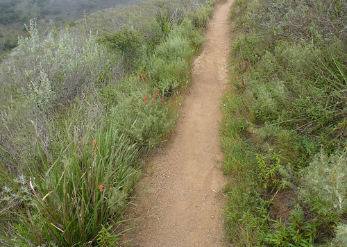 Panorama Mugu trail
