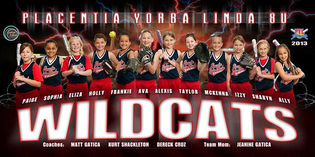 Wildcats Team Poster