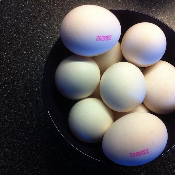 Egg-lichious