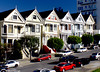 Painted ladies (13)