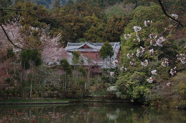 0779 - Templo Ryoanji