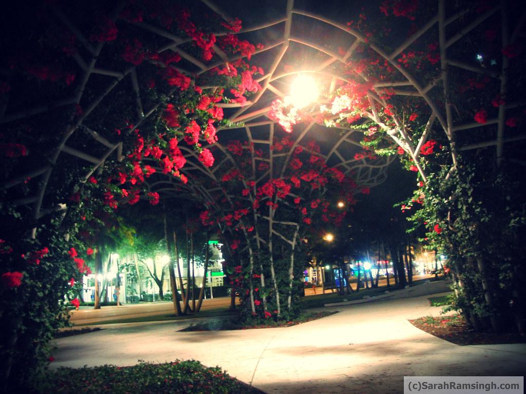 Spring in Miami
