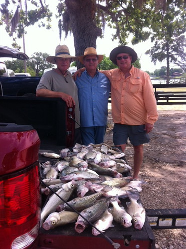 Lake livingston report pic heavy freshwater reports for Lake livingston fishing report