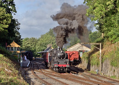80041 at Midsomer Norton 9/9/16