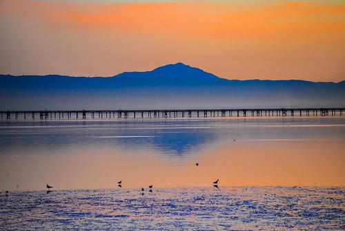 sf california ca sea orange usa water yellow sunrise landscape dawn bay us san francisco unitedstates tide low over calif mount diablo burlingame millbrae flickrstruereflection1 ilobsterit
