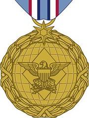 Drone Pilot medal