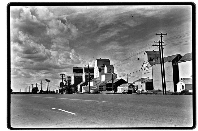 Alberta Wheat Pool Grain Elevators on Route 3 in Bow Island (Bow Island, Alberta : ca. 1976).