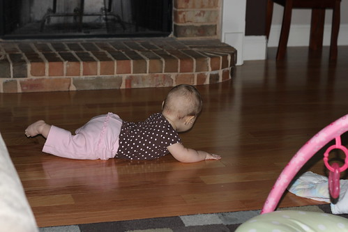 Dakota wants to crawl