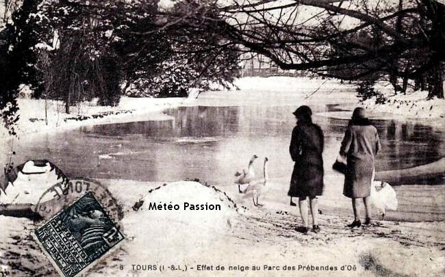 cygnes affamés dans un parc de Tours lors de la vague de froid de février 1929 météopassion