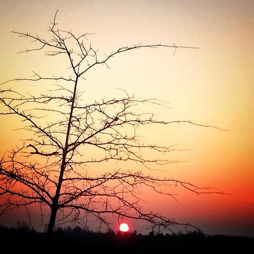 Bonne soirée. Good night  #sunset #igersfrance #igersgironde