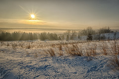 Foggy Sunrise_42337_.jpg by Mully410 * Images