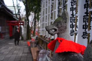 20130223 Ochobo Inari 3 - 無料写真検索fotoq